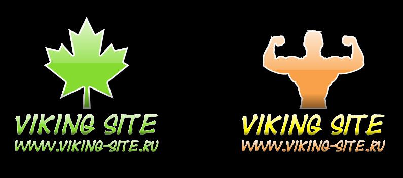 primeru-logotipov-studiya-viking-site-00-4052