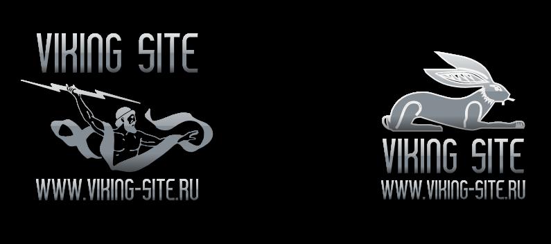 primeru-logotipov-studiya-viking-site-100v38